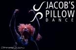 sylvia_pillow_logo